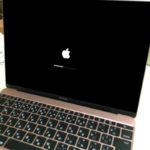 新しく買った12インチMacBook Early 2016ローズゴールドの開封の儀!