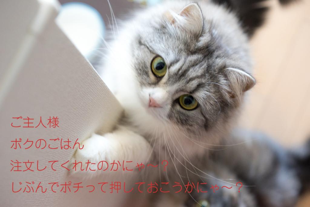 blog2016120503