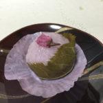 大阪梅田で桜餅を買うならどこの百貨店に行こうかな