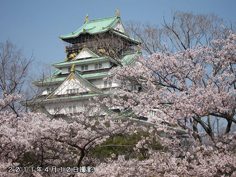 大阪城西の丸庭園 桜