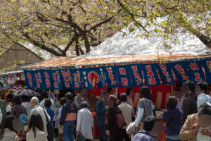 大阪造幣局桜の通り抜け 屋台