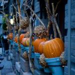 今年は大人なハロウィン!大阪で買える可愛いスイーツでプチハロウィン気分を味わおう♪