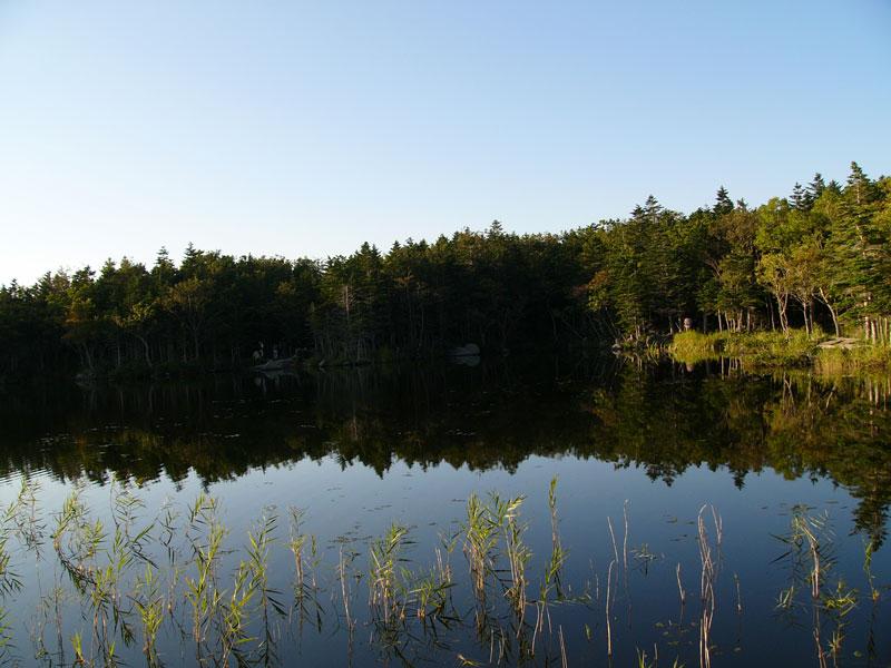 知床五湖 知床一湖