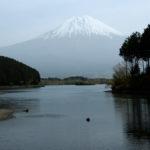 静岡一周富士伊豆箱根めぐり旅⑦富士山が見える田貫湖をのんびり散策~朝霧高原で牛と富士山を見る!