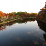 紅葉を見に行こうよぅ!1日目:大阪城公園